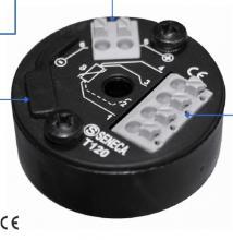 智能温度变送器(用于Pt100和Ni100探头)-T120